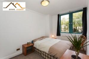 colocation logement Londres pour étudiant